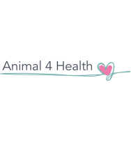 Flyers Animal 4 Health